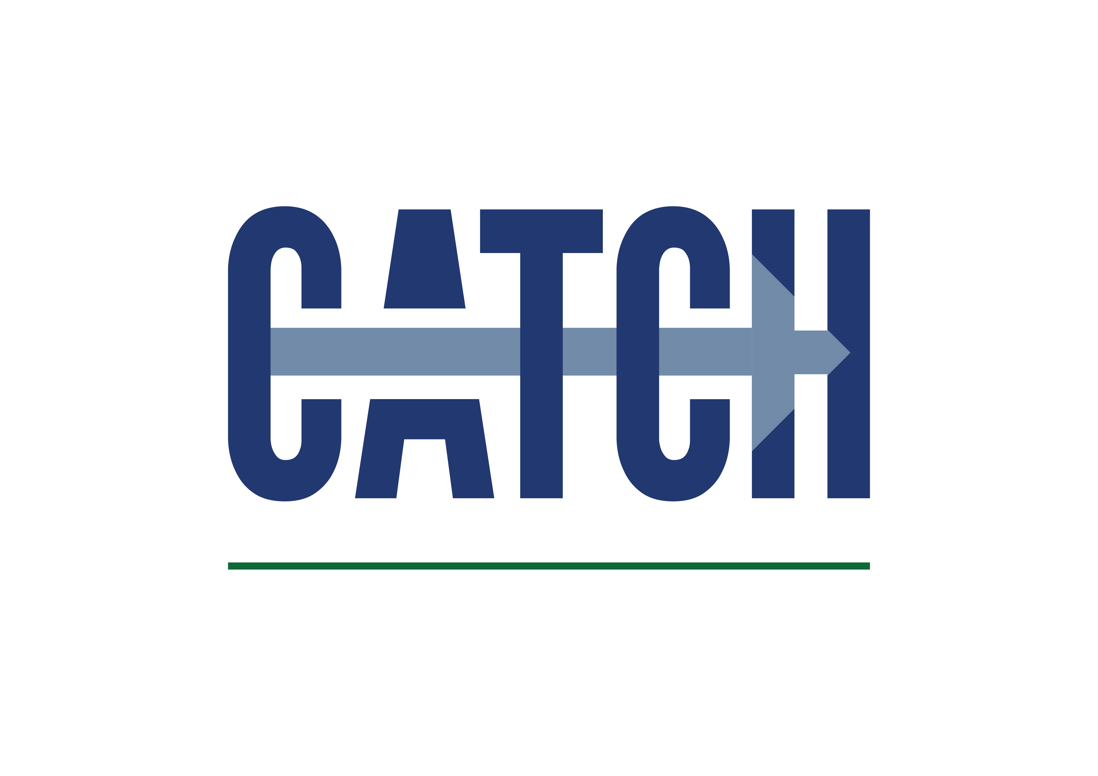 Image result for catch logo